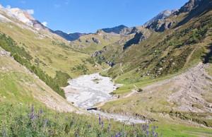 val zebru Parco Nazionale dello Stelvio Bormio
