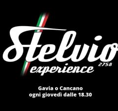 Stelvio Experience