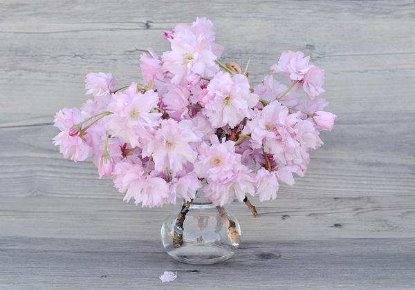 vasi fiori decorativi